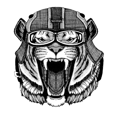 Wild tiger wearing motorcycle helmet, aviator helmet Illustration for t-shirt, patch, logo, badge, emblem, logotype Biker t-shirt with wild animal