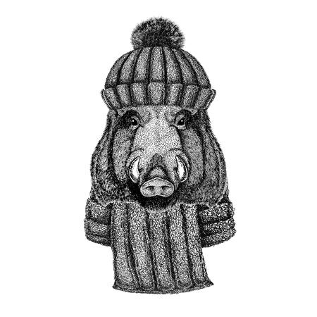Aper, zwijn, zwijn, zwijn, everzwijn draagt een gebreide muts en sjaal