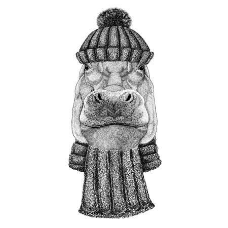 하마, 하마, 거대한 짐승, 강마가 니트 모자와 스카프 착용