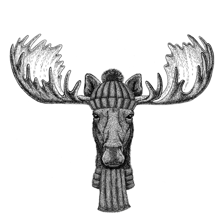 Moose, elk wearing knitted hat and scarf Imagens