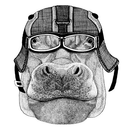 Hippo, Hippopotamus, behemoth, river-horse wearing motorcycle helmet, aviator helmet Illustration for t-shirt, patch, logo, badge, emblem, logotype Biker t-shirt with wild animal