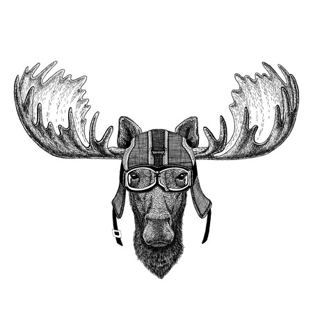 Moose, elk wearing motorcycle helmet, aviator helmet Illustration for t-shirt, patch, logo, badge, emblem, logotype Biker t-shirt with wild animal Stock Photo