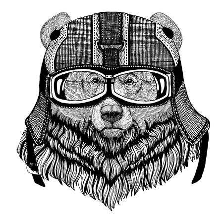 Grizzly bear Big wild bear wearing motorcycle helmet, aviator helmet Illustration for t-shirt, patch, logo, badge, emblem, logotype Biker t-shirt with wild animal Stock Photo