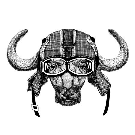 Buffalo, bull, ox wearing motorcycle helmet, aviator helmet Illustration for t-shirt, patch, logo, badge, emblem, logotype Biker t-shirt with wild animal