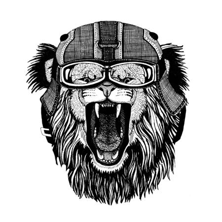 オートバイを身に着けているライオンのヘルメット、フライト ヘルメット イラスト t シャツ、パッチ、ロゴ、バッジ、エンブレム、ロゴタイプ野生 写真素材