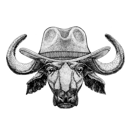 Buffalo, bull, ox Wild animal wearing cowboy hat Wild west animal Cowboy animal T-shirt, poster, banner, badge design Stock Photo