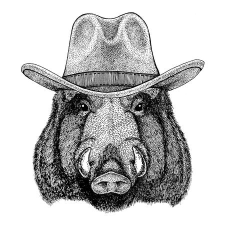 Aper, boar, hog, hog, wild boar Wild animal wearing cowboy hat Wild west animal Cowboy animal T-shirt, poster, banner, badge design Stock Photo