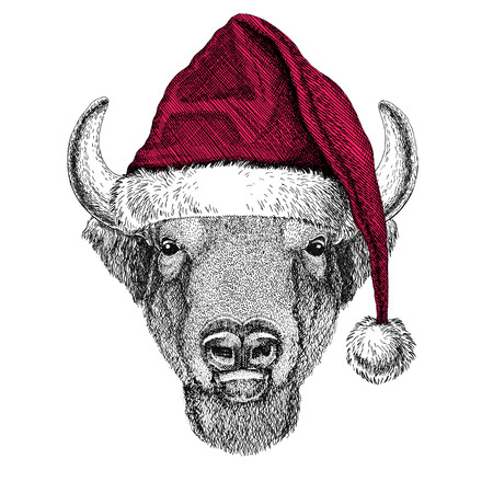 Buffalo, bison,ox, bull Christmas illustration Wild animal wearing christmas santa claus hat Red winter hat Holiday picture Happy new year Stock Photo