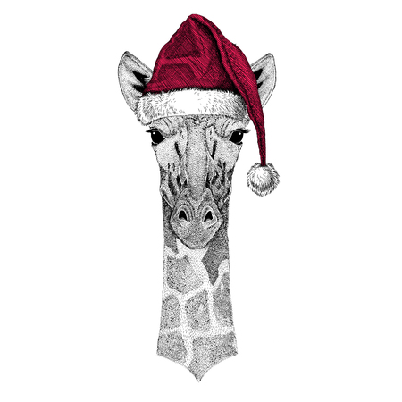 camelopard: Camelopard, giraffe Christmas illustration Wild animal wearing christmas santa claus hat Red winter hat Holiday picture Happy new year Stock Photo