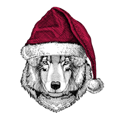 Wolf Dog Christmas illustration Wild animal wearing christmas santa claus hat Red winter hat Holiday picture Happy new year