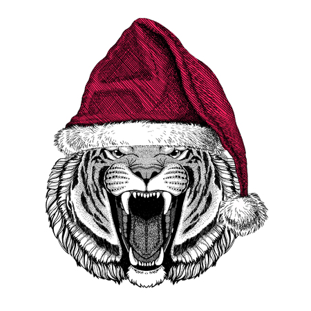 Wild tiger Christmas illustration Wild animal wearing christmas santa claus hat Red winter hat Holiday picture Happy new year