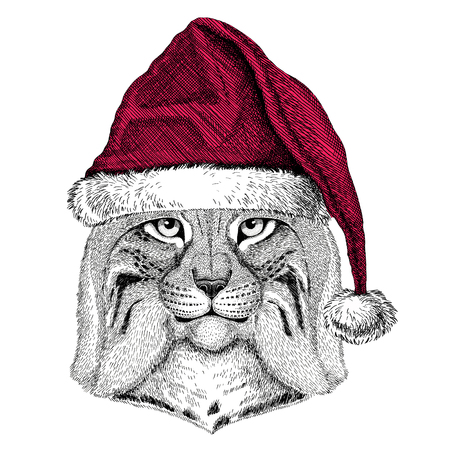 Wild cat Lynx Bobcat Trot Christmas illustration Wild animal wearing christmas santa claus hat Red winter hat Holiday picture Happy new year Stock Photo