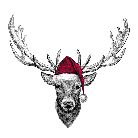 Christmas illustration Wild animal wearing christmas santa claus hat Red winter hat Holiday picture Happy new year 스톡 콘텐츠