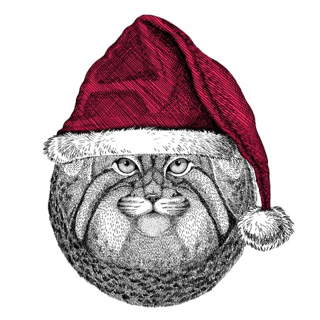 Christmas illustration Wild animal wearing christmas santa claus hat Red winter hat Holiday picture Happy new year Stock Photo