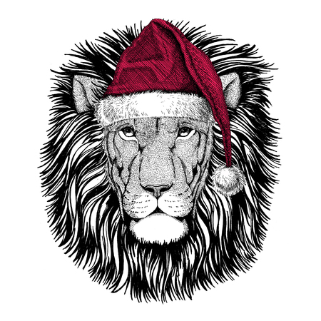 Christmas illustration Wild animal wearing christmas santa claus hat Red winter hat Holiday picture Happy new year Foto de archivo