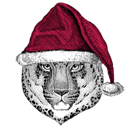 Christmas illustration Wild animal wearing christmas santa claus hat Red winter hat Holiday picture Happy new year Reklamní fotografie