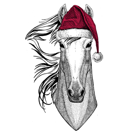 Christmas illustration Wild animal wearing christmas santa claus hat Red winter hat Holiday picture Happy new year 写真素材