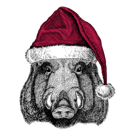 Christmas illustration Wild animal wearing christmas santa claus hat Red winter hat Holiday picture Happy new year Zdjęcie Seryjne