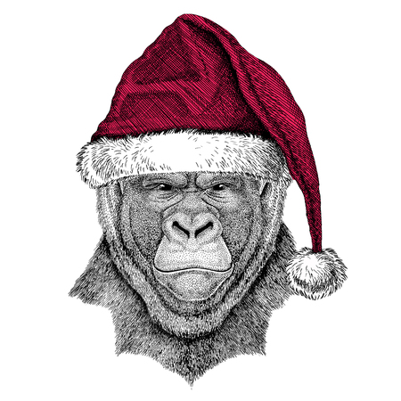 frightful: Christmas illustration Wild animal wearing christmas santa claus hat Red winter hat Holiday picture Happy new year Stock Photo