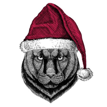 Panther Puma Cougar Wilde kat Kerst illustratie Wild dier draagt kerst hoed van de Kerstman Rode winter hoed Vakantiefoto Gelukkig nieuwjaar