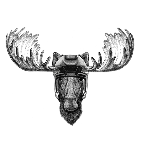 Moose, elk Hockey image Wild animal wearing hockey helmet Sport animal Winter sport Hockey sport