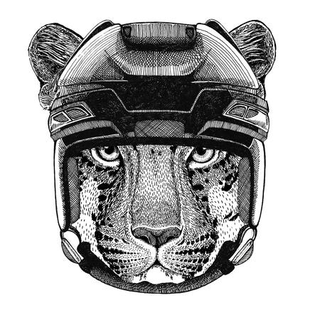 Wild cat Leopard Cat-o-mountain Panther Hockey image Wild animal wearing hockey helmet Sport animal Winter sport Hockey sport