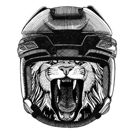 Lion Hockey image Wild animal wearing hockey helmet Sport animal Winter sport Hockey sport Stock fotó