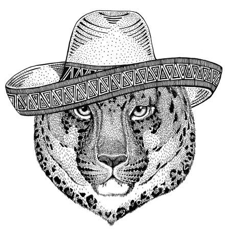 Wilde kat Luipaard Kat-o-berg Panter Wilde dieren dragen sombrero Mexico Fiesta Mexicaanse feestillustratie Wilde westen
