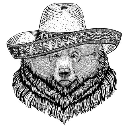 Grizzly bear Big wild bear Wild animal wearing sombrero Mexico Fiesta Mexican party illustration Wild west