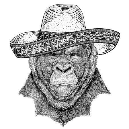 고릴라, 원숭이, 원숭이 무서운 동물 챙 넓은 모자를 착용하는 야생 동물 멕시코 축제 멕시코 파티 그림 와일드 웨스트 스톡 콘텐츠