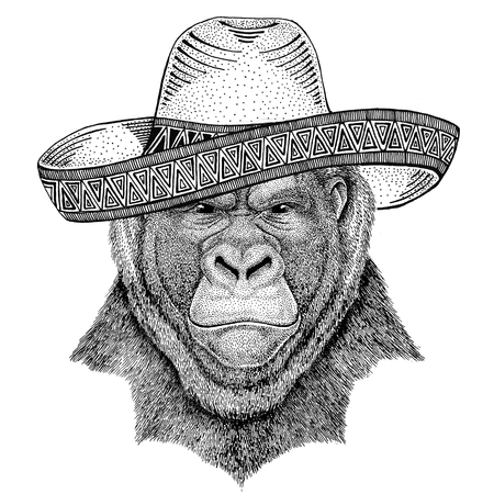 Gorilla, monkey, ape Frightful animal Wild animal wearing sombrero Mexico Fiesta Mexican party illustration Wild west Stok Fotoğraf - 82004927