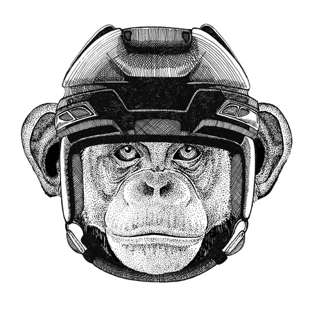 Chimpansee Monkey Hockey afbeelding Wild dier draagt hockey helm Sport dier Wintersport Hockey sport