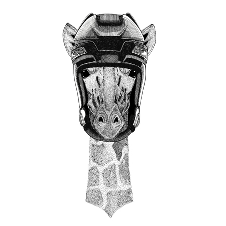 기린, 기린 하키 이미지 야생 동물 입고 하키 헬멧 스포츠 동물 겨울 스포츠 하키 스포츠 스톡 콘텐츠