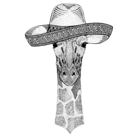 Camelopard、キリン野生動物身に着けているソンブレロ メキシコ フィエスタ メキシコ パーティー野生の西の図