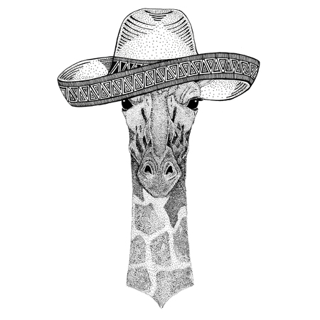 Camelopard, giraffe Wild animal wearing sombrero Mexico Fiesta Mexican party illustration Wild west