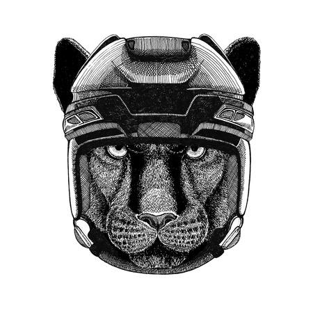 Panther Puma Cougar Wilde kat Hockeyafbeelding Wilde dieren dragen hockeyhelm Sportbeest Wintersport Hockeysport