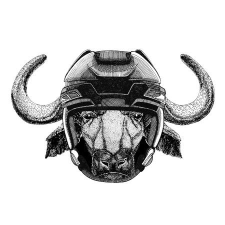 Buffalo, bull, ox Hockey image Wild animal wearing hockey helmet Sport animal Winter sport Hockey sport