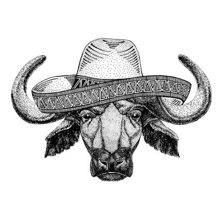 Buffalo, bull, ox Wild animal wearing sombrero Mexico Fiesta Mexican party illustration Wild west