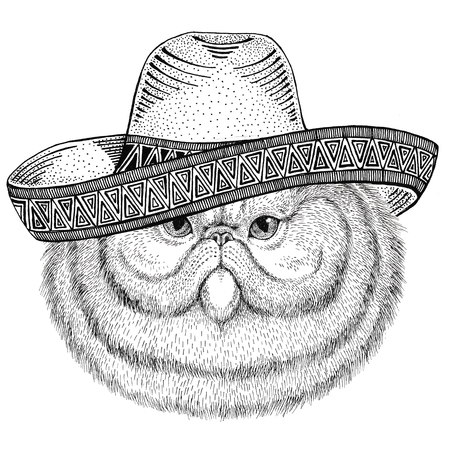 Portrait of fluffy persian cat Wild animal wearing sombrero Mexico Fiesta Mexican party illustration Wild west
