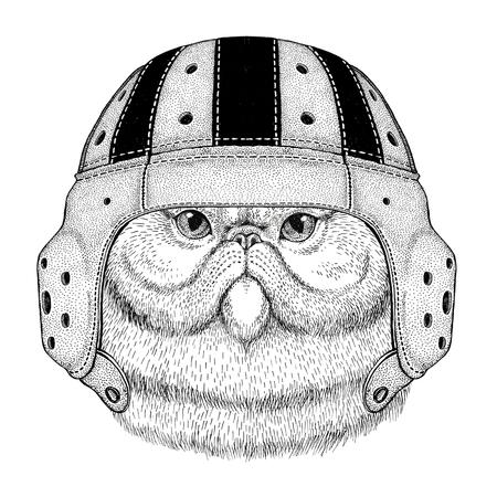 Portrait of fluffy persian cat Wild animal wearing rugby helmet Sport illustration