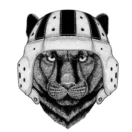 Panter Puma Cougar Wilde kat Wild dier draagt rugby helm Sport illustratie Stockfoto