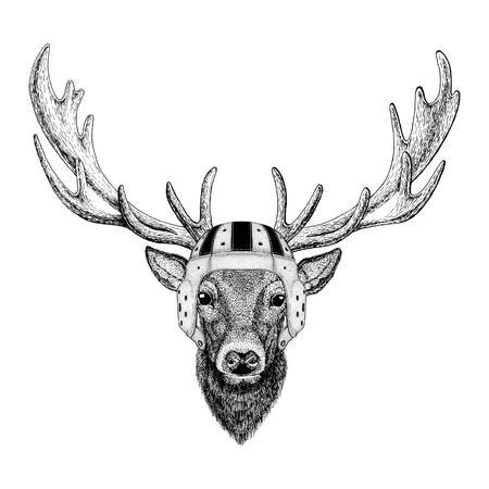 Deer Wild animal wearing rugby helmet Sport illustration Фото со стока