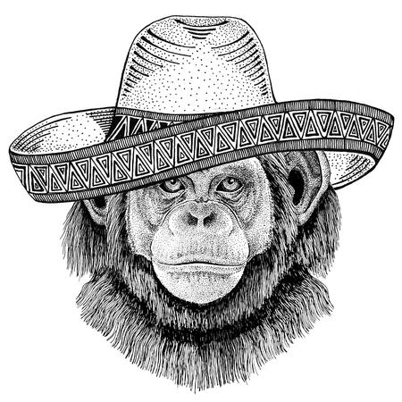Chimpansee Monkey Wild dier dragen Sombrero Mexico Fiesta Mexicaanse partij illustratie Wild West