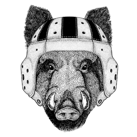 Aper, boar, hog, hog, wild boar Wild animal wearing rugby helmet Sport illustration