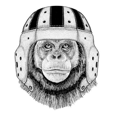 Chimpanzee Monkey Wild animal wearing rugby helmet Sport illustration Фото со стока