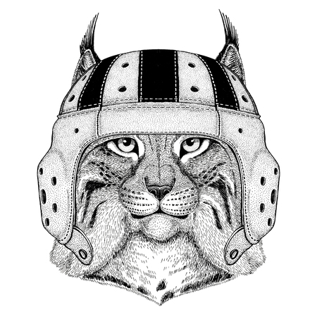 Wild cat Lynx Bobcat Trot Wild animal wearing rugby helmet Sport illustration Stock Photo