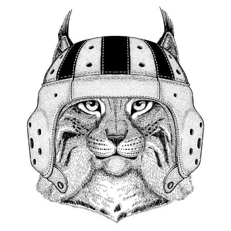 Wild cat Lynx Bobcat Trot Wild animal wearing rugby helmet Sport illustration Reklamní fotografie
