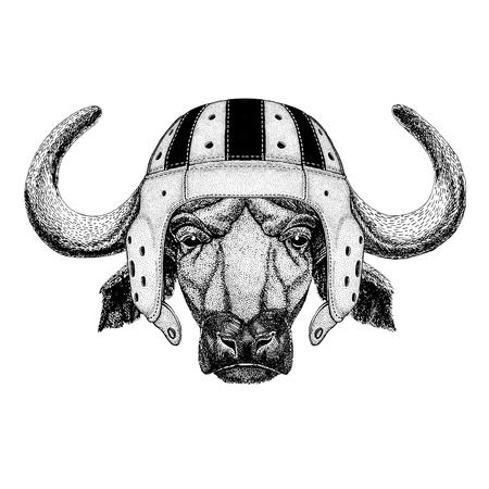 Buffalo, bull, ox Wild animal wearing rugby helmet Sport illustration Фото со стока
