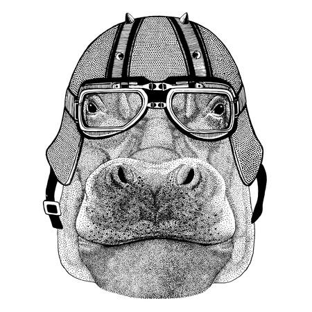 Hippopotame, béhémoth, casque de biker portant un cheval de rivière Animal avec casque en cuir de moto Casque vintage pour bikers Casque d'aviateur Banque d'images - 82005448