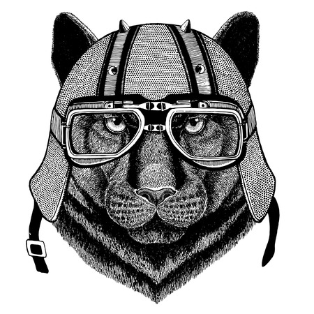 Panther Puma Cougar Wild cat wearing biker helmet Animal with motorcycle leather helmet Vintage helmet for bikers Aviator helmet